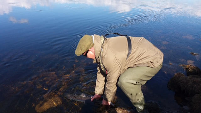 Paul Morris releasing his 8lbs. fish on the 18th of May 2017